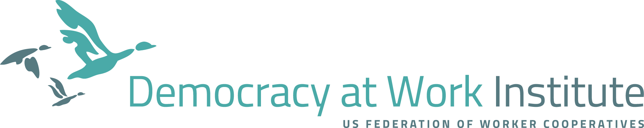 Democracy at Work Institute